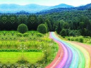 rainbow-path.jpg~original